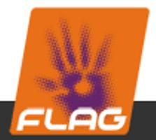 flag_logo_copy