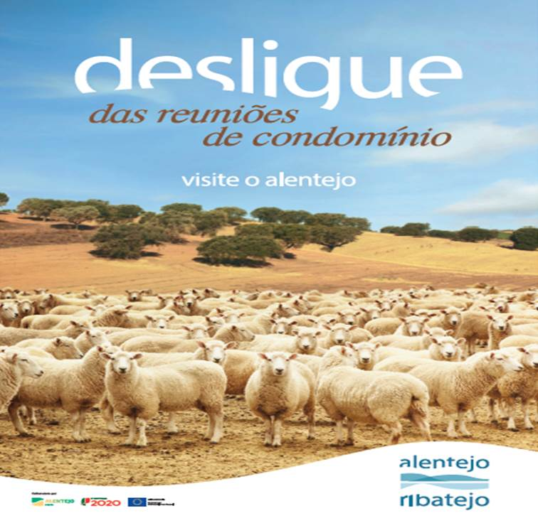 Desligue-se do stress: visite o Alentejo e o Ribatejo